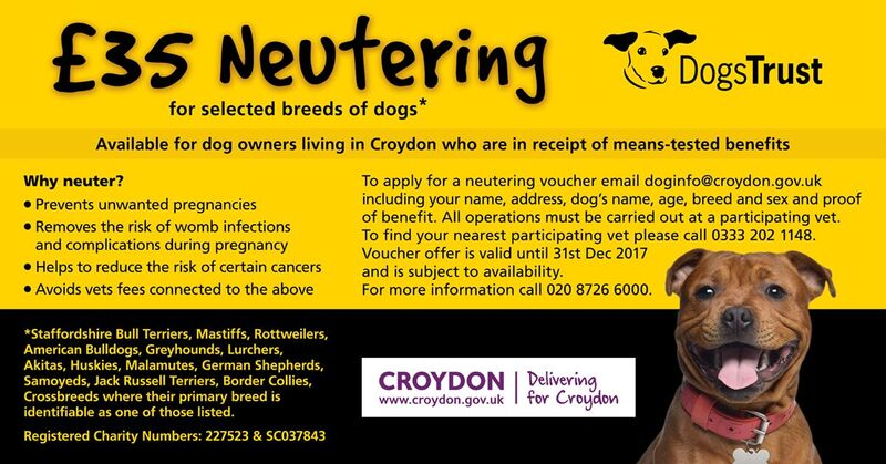 Cost To Have Dog Neutered Uk