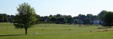 Lloyd Park