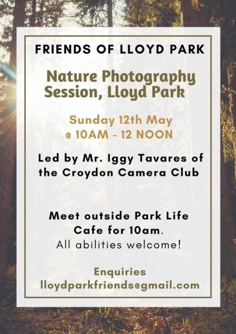 LloydParkPhotography
