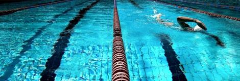 FreeSwimming